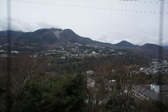 Dog Palace Resort Hakone: 部屋からの眺め