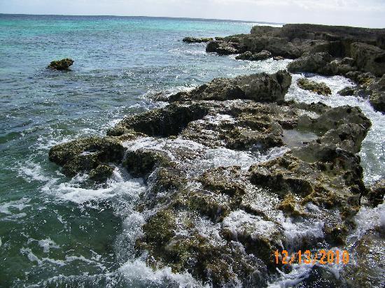Cozumel, Mexico: Rocky Coastline