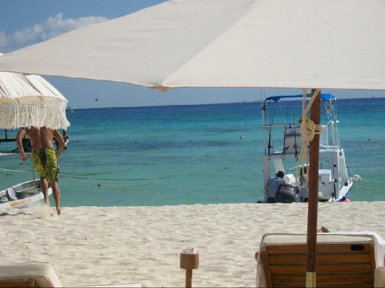 El Taj Oceanfront & Beachside Condos Hotel: the beach