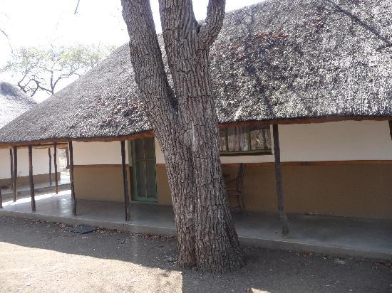 Shingwedzi Rest Camp: Notre logement