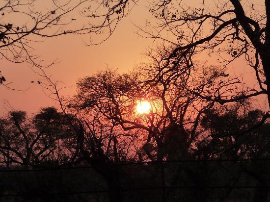 Shingwedzi Rest Camp: Lever de soleil du camp