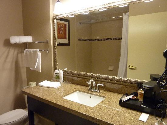 Country Inn & Suites By Carlson, Tampa Airport North: Badezimmer