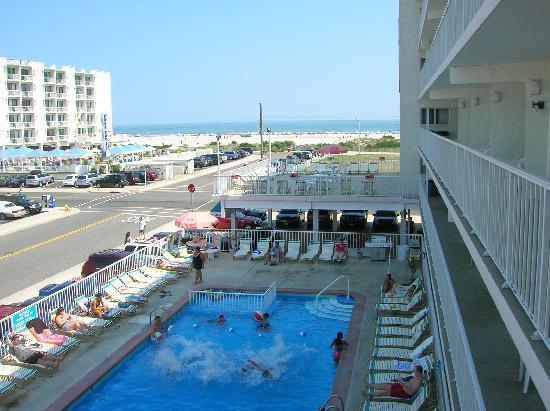 Lotus Inn: Pool