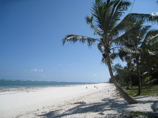 Diani Sea Lodge: The beach