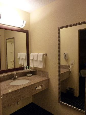 SpringHill Suites St. Petersburg Clearwater照片