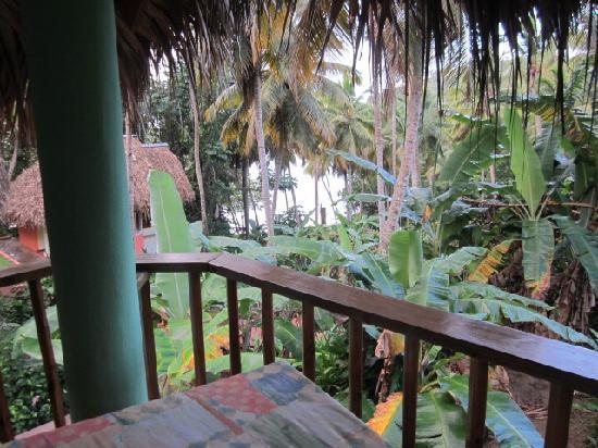 Hotel Las Ballenas Escondidas: Our view!