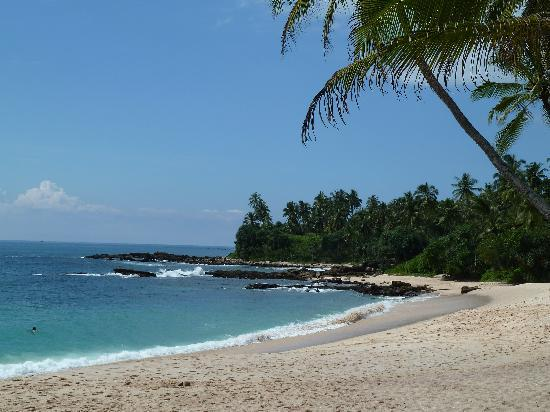 Amanwella: the beach