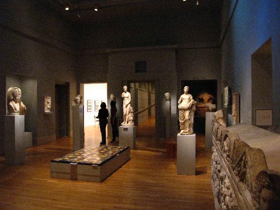 Michael C. Carlos Museum: Carlos Museum - Greek and Roman