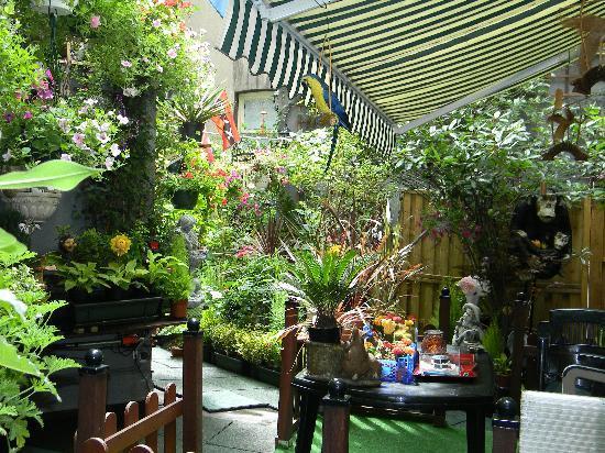 Hotel Nadia: Hidden flower garden