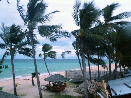 Marlin's Beach Resort: Side view from Marlin's