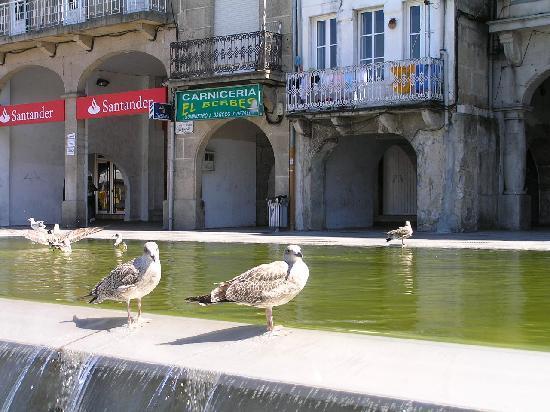 Vigo, Spanien: Altstadt