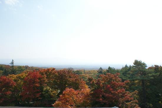Nasu onsen Sanraku: 上の階は那須の原の眺めがすばらしい