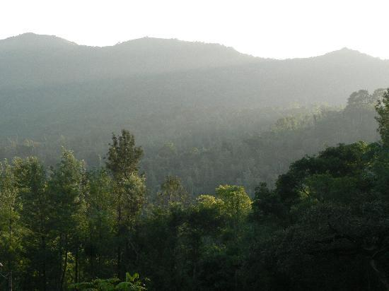 Linger at Balur Estate : Surrounded by pretty hills