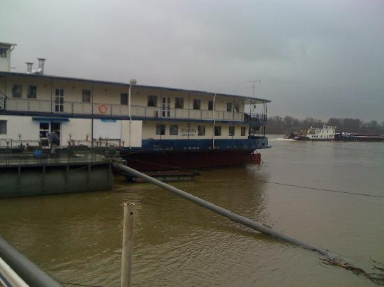Aquamarina Hotel: hotel