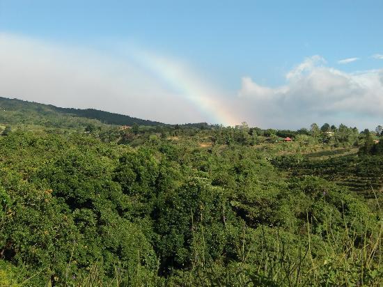 Hotel Mango Valley: rainbow right outside