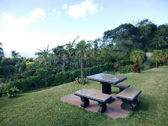 Hotel Mango Valley: eat and enjoy the view