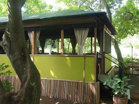 Murera Springs Eco Lodge: Tent for relaxation