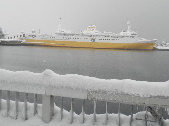 Seikan Ferry Memorial Ship Hakkodamaru: 全景