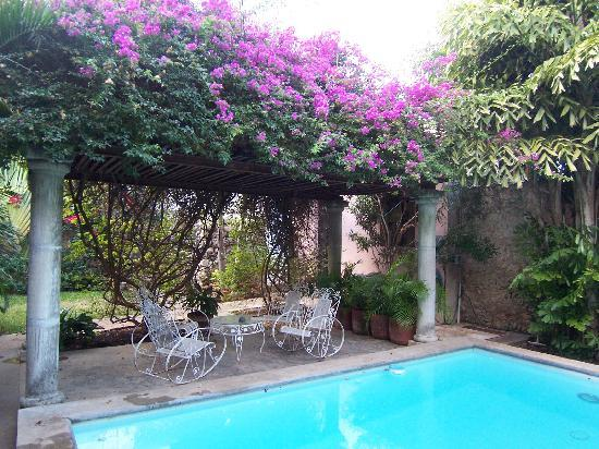 Casa Santiago: Pool & Garden View