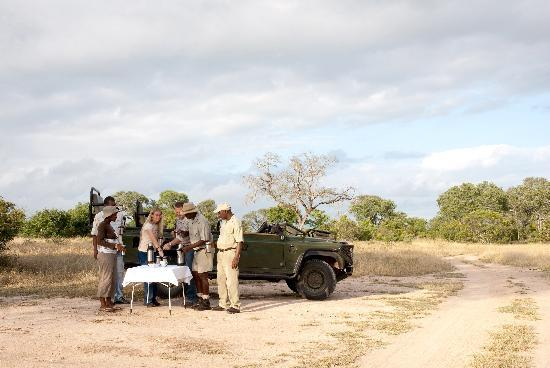Notten's Bush Camp: Game drive