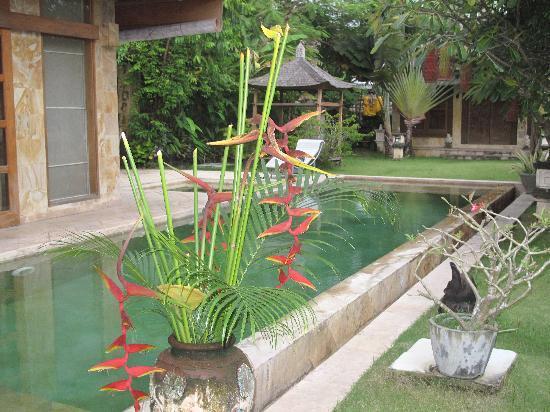 Villa Dermawan: villa dermanwan