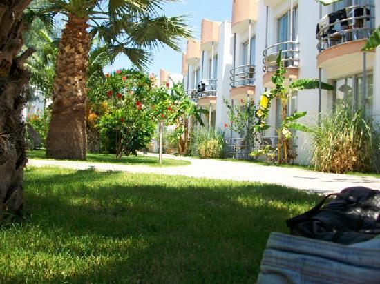 Hotel Sun Club : Found a bit of shade!