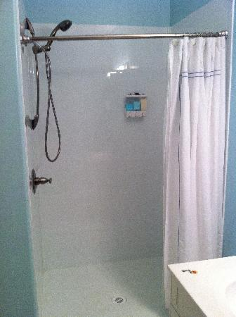 Prairieland B&B: Spacious Shower