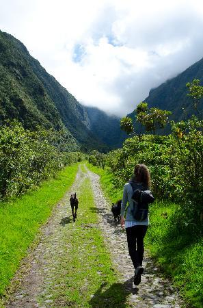 Imbabura Province, เอกวาดอร์: Hiking up the valley with Fito and Dominga