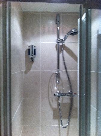 Springdale House: lovely shiny shower