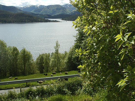 Aure Municipality, Norway: View from the bedroom window :)