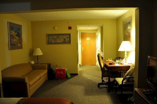 Wingate by Wyndham Tampa/At USF: salon avec bureau, au fond un grand placard et un coffre-fort dans l'entrée. placard