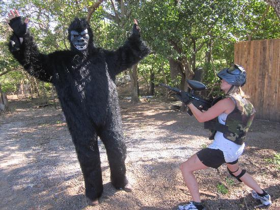 Surf Ranch Paintball : shoot the gorilla