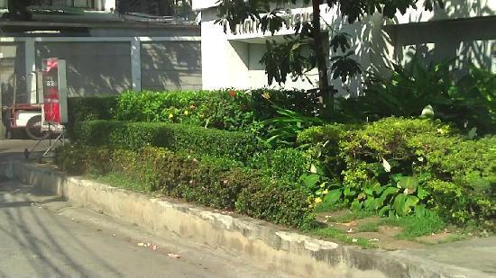 Yannawa Residence Bangkok: petit par-terre de plantes et fleurs a l'entree de la residence