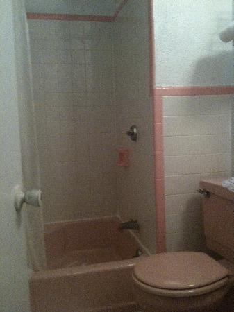 Aruba Motel: Shower
