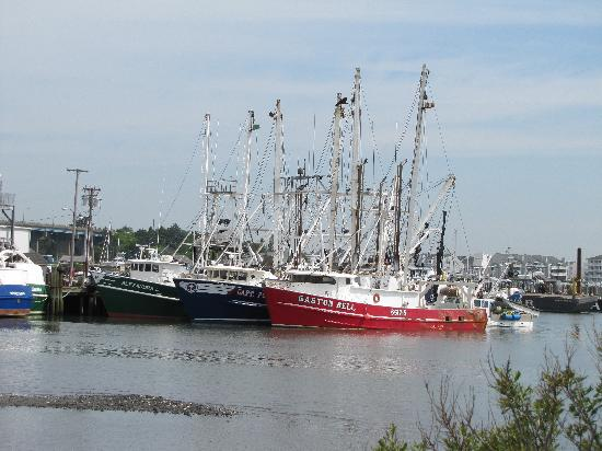 Cape May, NJ: Harbor Scene