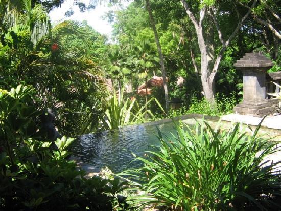 Four Seasons Resort Bali at Jimbaran Bay: plunge pool suite, 5-Star in the truest sense, service, design, food, details…