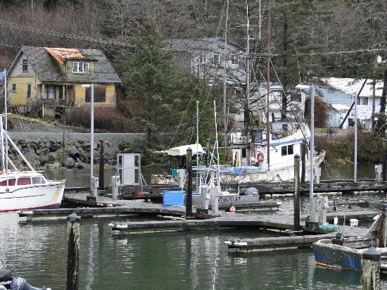 blue heron inn craig alaska