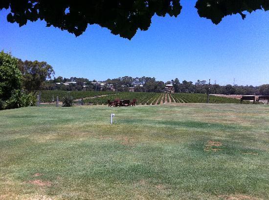 Riverbank Winery: view