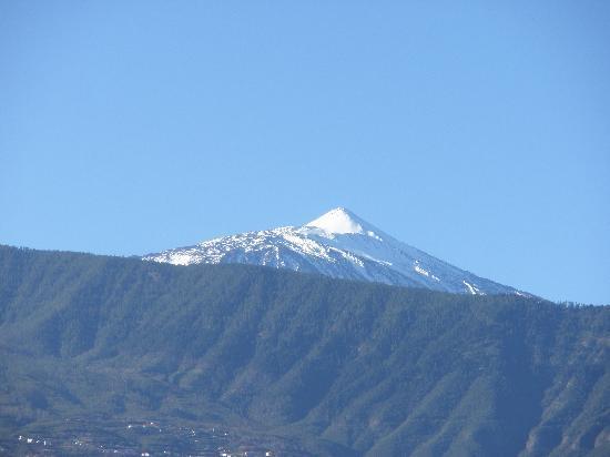 diverhotel Tenerife Spa & Garden : Una maravilla de la naturaleza