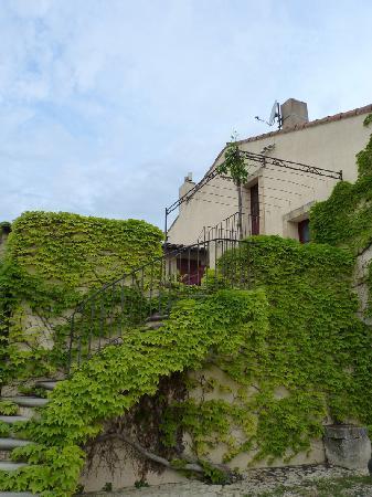 La Tuilière en Luberon : L'escalier feuillu menant à notre chambre
