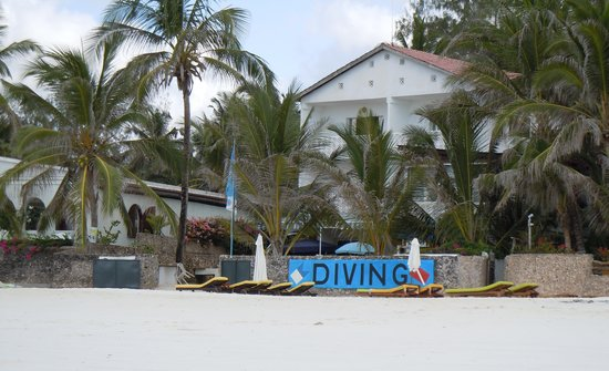 Blue-Fin Diving