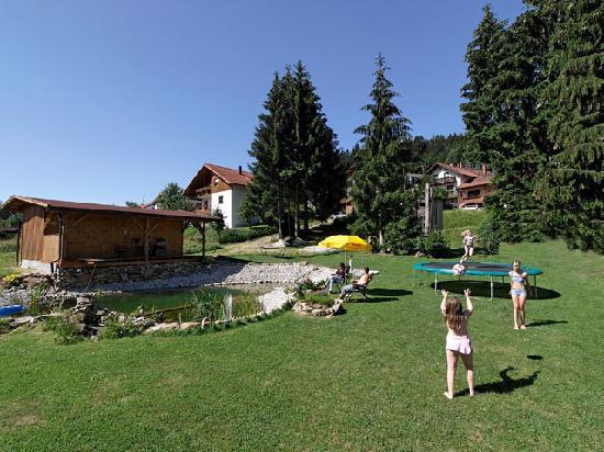 Pension und Ferienhaus Am Zwieselberg: Garten mit Badeweiher