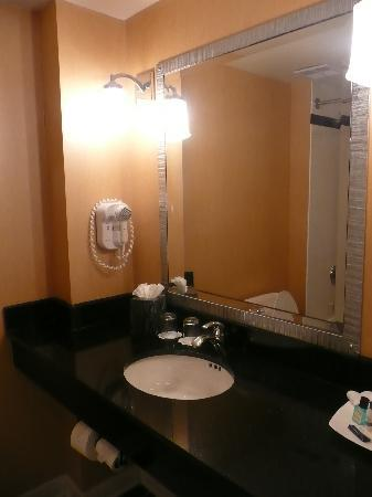 O'Callaghan Hotel Annapolis: The bathroom and vanity area