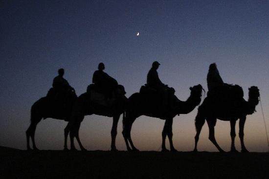 Riad Nezha : camel trek