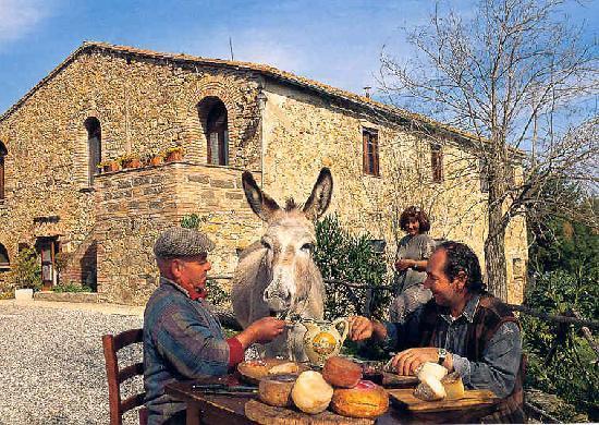 Fattoria Lischeto: Agriturismo con Ottima cucina, cordialita' e splendido panorama soli 10mn. da Volterra
