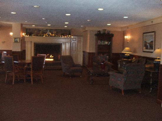 Red Jacket Mountain View Resort & Water Park: the fireplace at Palmers Lounge.This moms favorite place to escape with a book.