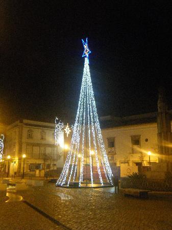 Tavira, Portugal: Tree