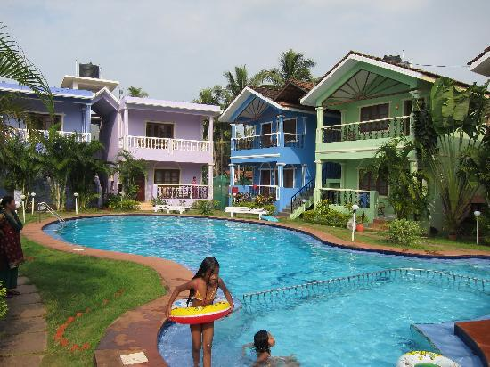 Maggies guest house updated 2018 guesthouse reviews price comparison goa calangute for Guest house in goa with swimming pool