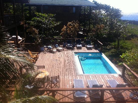 Cocolobo : Pool