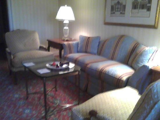 Grand America Hotel: living room